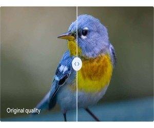 جوجل تحذير مستخدمي Google Photos بشأن الجودة