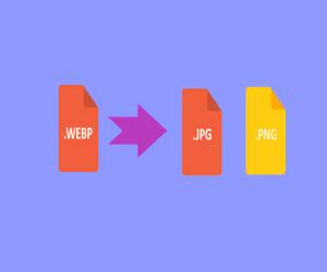 كيفية تحويل الصور بتنسيق WEBP إلى تنسيق JPEG أو PNG ...