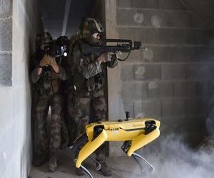 الجيش الفرنسي يختبر روبوت Spot في تدريب قتالي