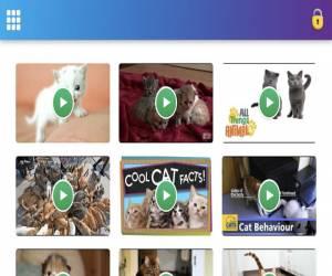 تطبيق Jellies يجعل يوتيوب منصة آمنة ومناسبة للأطفال والفئ...