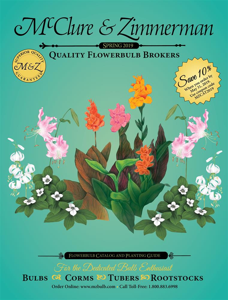 Flower Garden Bulbs | Flower Bulbs | McClure & Zimmerman Company
