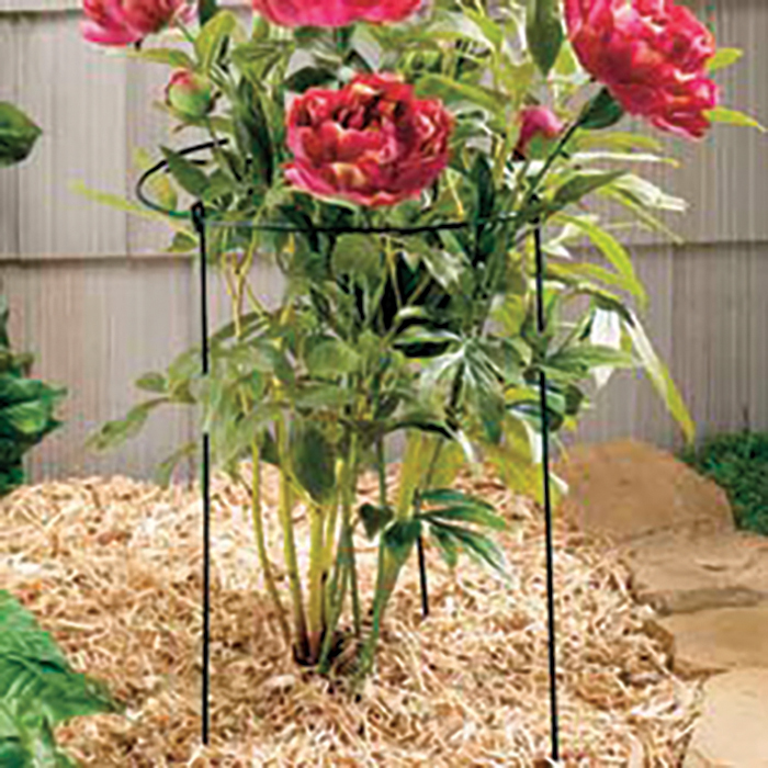 Grow Through Grid 20 Inch X 30 Inch Plant Support 3 Count