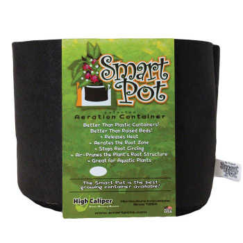 10 Gallon Black Smart Pot