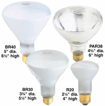 Indoor/Outdoor Reflector Lamps