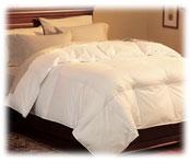 Hospitality Down Comforters