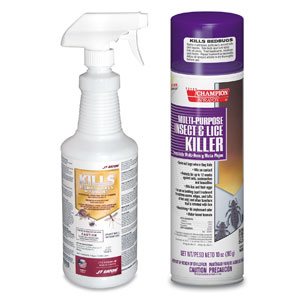 Bed Bug Treatment & Control