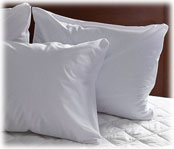 Soft Terry Zippered Pillow Protectors