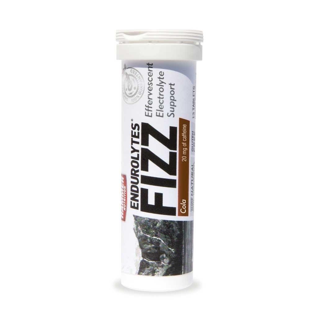 HAMMER ENDUROLYTES FIZZ (13 SRV)