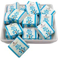 Lake Champlain Organic Milk Chocolate Squares