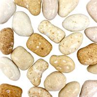 Organic Ginger Stones