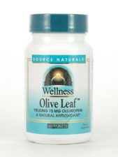 Wellness Olive Leaf 500 mg