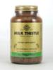Milk Thistle (Silybum marianum)