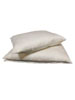 Organic Cotton Filled Pillow - Regular Loft
