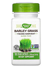 Barley Grass Young Harvest
