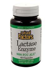 Lactase Enzymes