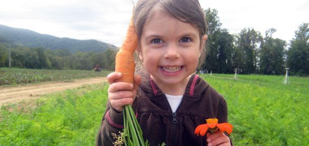 Carrot Girl