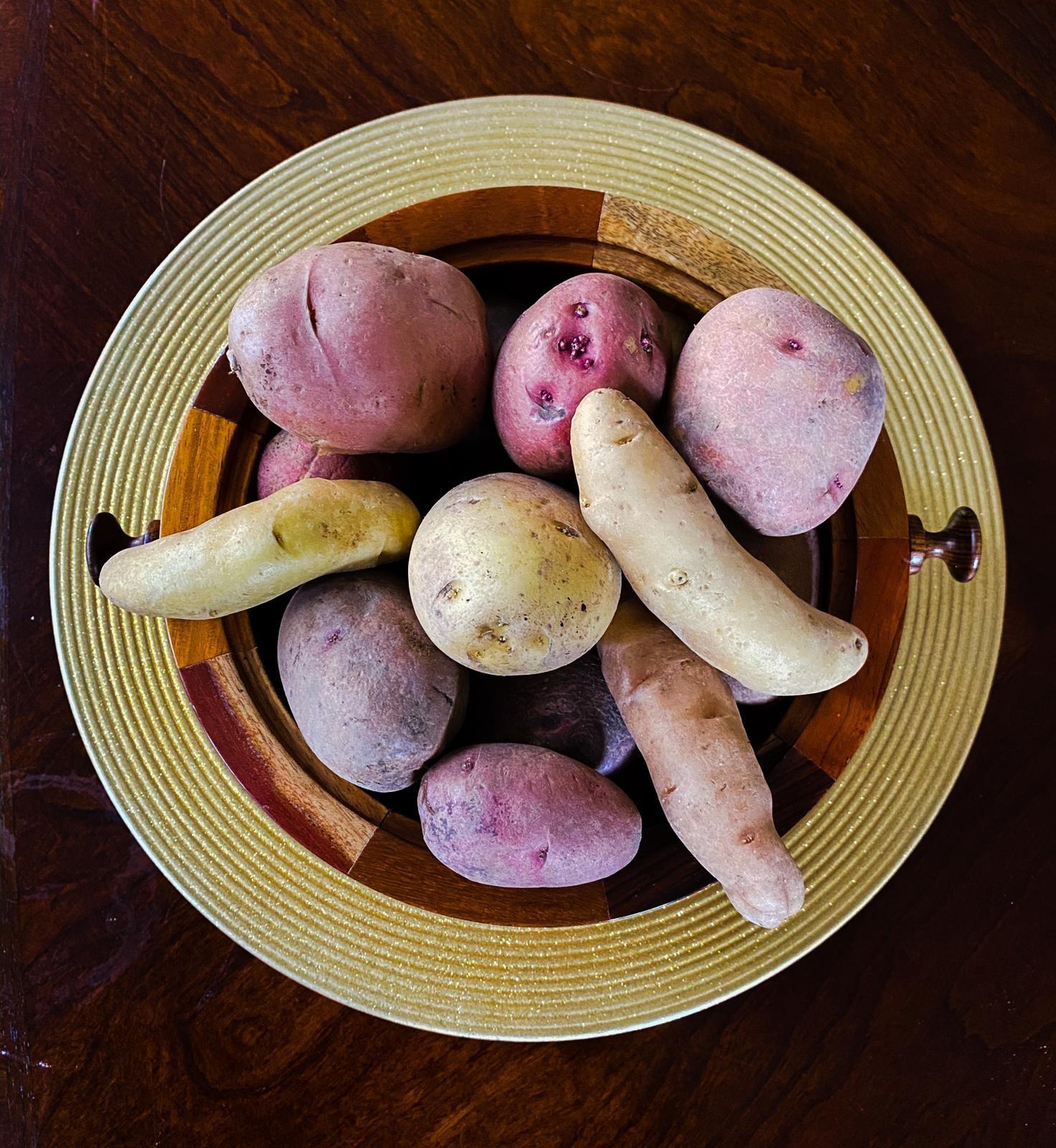10LB Organic Variety Mix