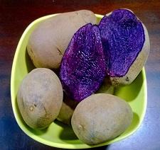 Organic Purple Majesty