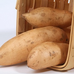 Sweet Potato Slips - Bonita