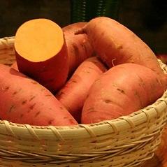 Sweet Potato Slips - Covington