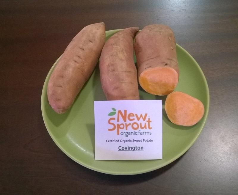 Sweet Potato Slips - OG Covington