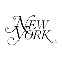 best plastic surgeon new york magazine