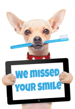 Missed Your Smile Dog Missed Appointment Postcard