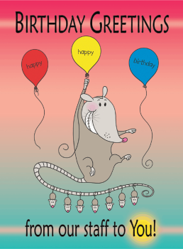 Opossum Birthday Greeting Card