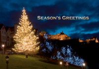Christmas Tree Season's Greetings Holiday Greeting Card