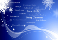 Merry Christmas Languages Holiday Greeting Card