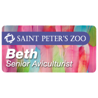 "Sublimated 1.5"" x 3"" Aluminum Name Badge with Magnetic Back"