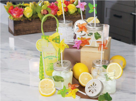Porch Party Lemonade Party Set