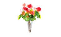 Guest Etiquette - Flowers
