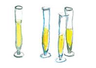 Guest Etiquette - Champagne Flutes