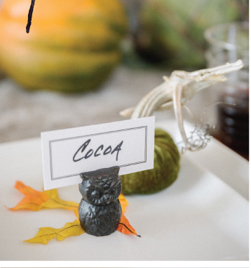Wise Owl place card holders