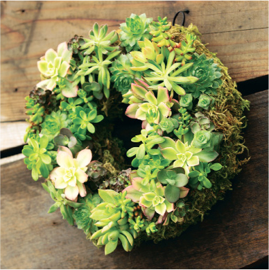 A Wreath That Evokes Spring