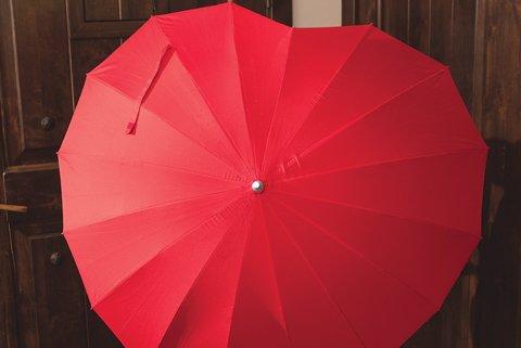 Cover My Heart Umbrella