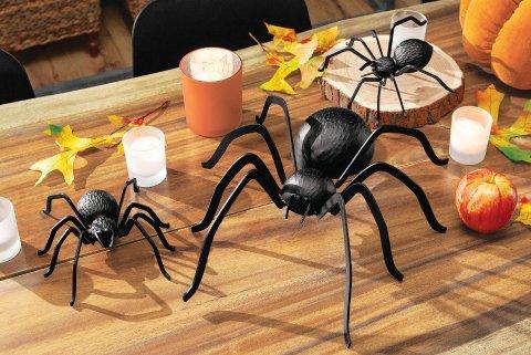 Heavy Metal Spiders