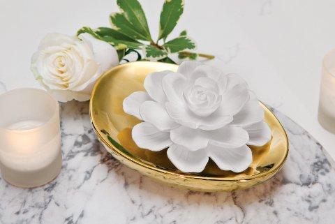 Lotus Blossom Diffuser