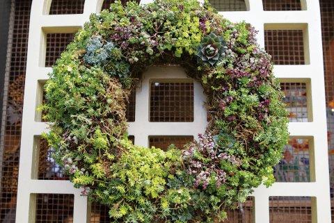 Lush Succulent Wreath