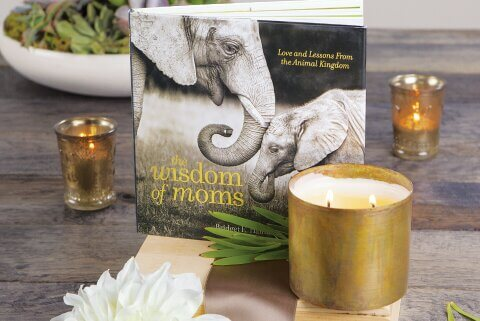 Mother's Wisdom & Candle