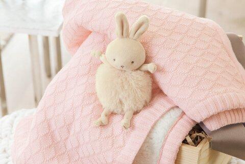 Pink Blankie & Bun Bun