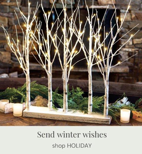 Snowdrift Lit Trees