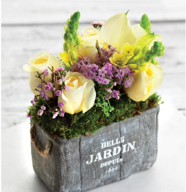 Belle Jardin Fleur