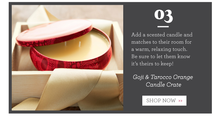 Goji & Tarocco Orange Candle