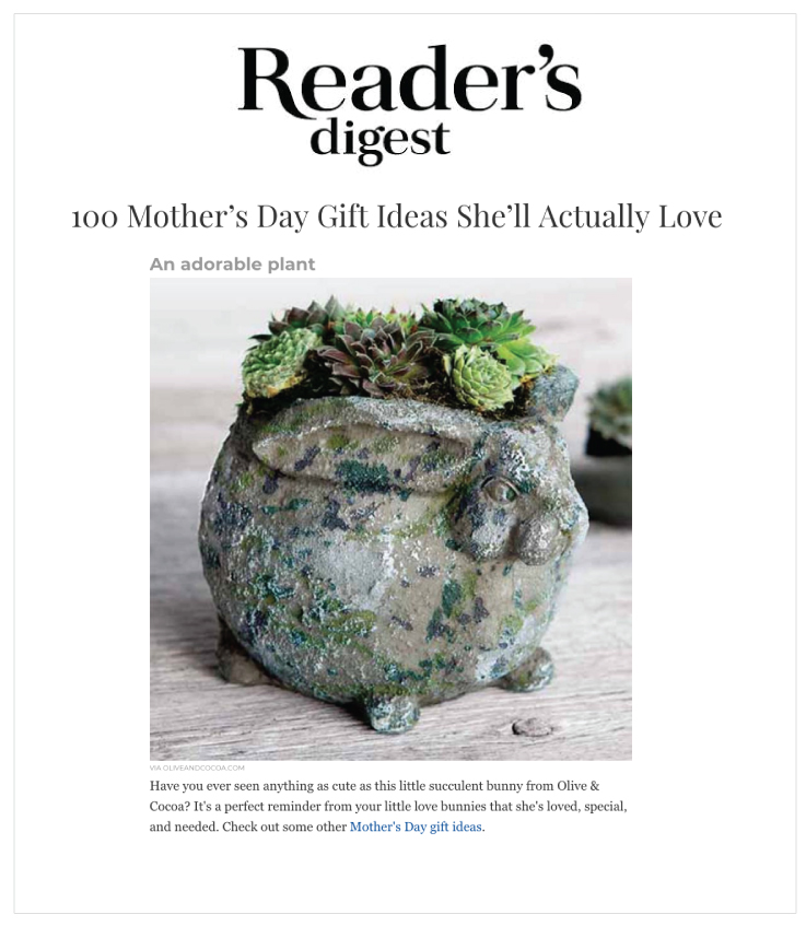 As Seen In Reader's Digest - Olive & Cocoa's Succulent Bunny