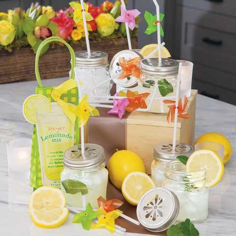 Porch Party Lemonade Set