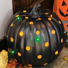 Black Magic Lit Pumpkin