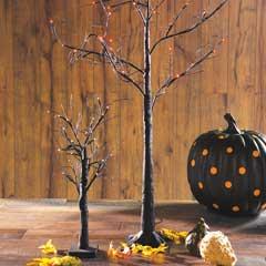 Spooky Lit Trees