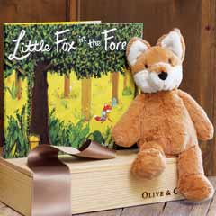 Fynn The Fox & Picture Book